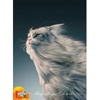 动物广告设计精美案例,平面设计案例,动物绘画案例